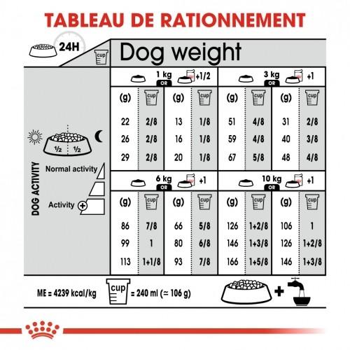 Alimentation pour chien - Royal Canin Mini Exigent pour chiens