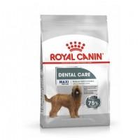 Croquettes pour chien - Royal Canin Maxi Dental Care - Croquettes pour chien Maxi Dental Care Adulte