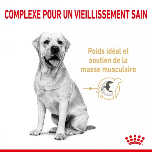Alimentation pour chien - Royal Canin Labrador Retriever Adult 5+ pour chiens