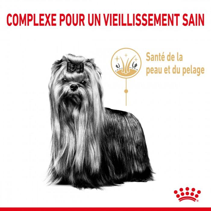 Alimentation pour chien - Royal Canin Yorkshire Terrier Adult 8+ pour chiens