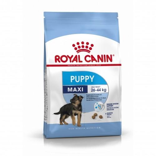 Alimentation pour chien - Royal Canin Maxi Puppy - Croquettes pour chiot pour chiens