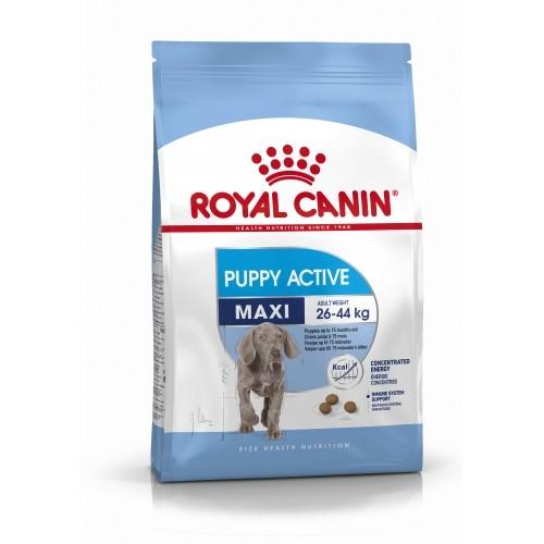 Croquettes pour chien - ROYAL CANIN Size Nutrition Maxi Puppy Active