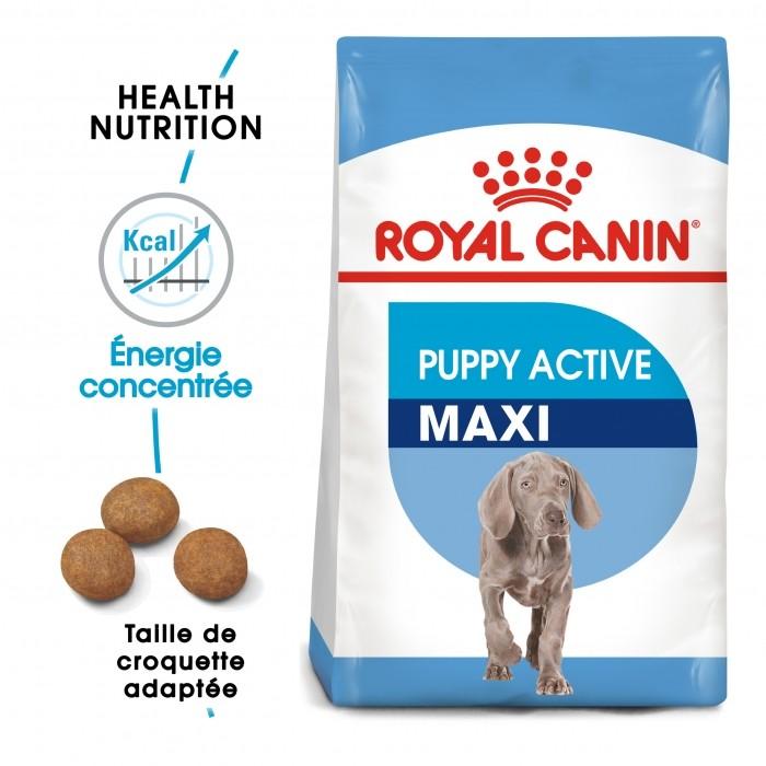 Alimentation pour chien - Royal Canin Maxi Puppy Active pour chiens