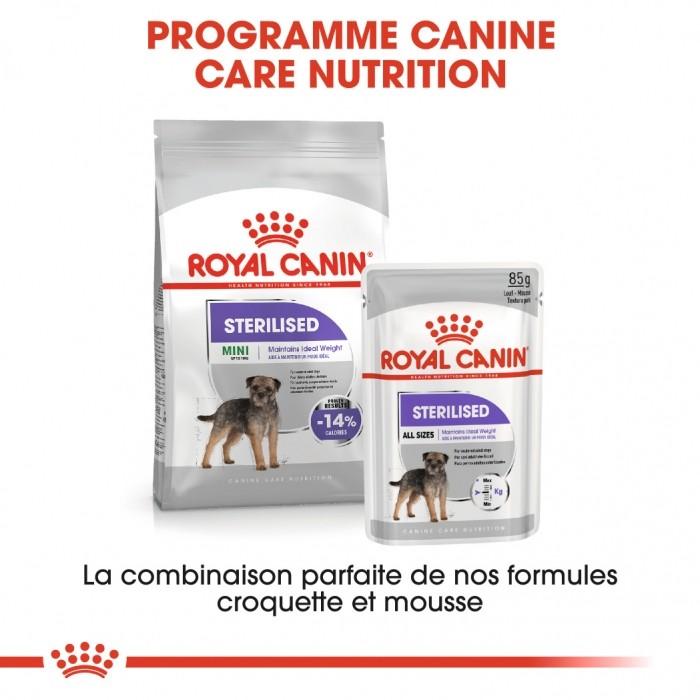 Alimentation pour chien - Royal Canin Mini Sterilised - Croquettes pour chien pour chiens