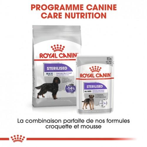 Alimentation pour chien - Royal Canin Maxi Sterilised pour chiens