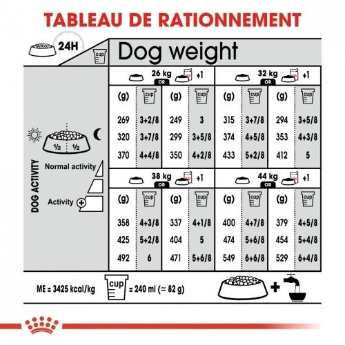 Alimentation pour chien - Royal Canin Maxi Sterilised - Croquettes pour chien pour chiens