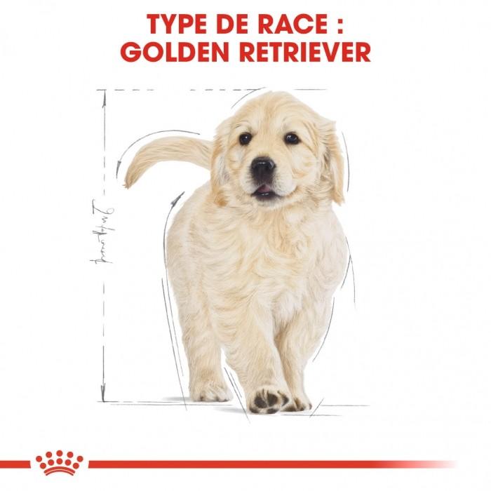Alimentation pour chien - Royal Canin Golden Retriever Puppy pour chiens