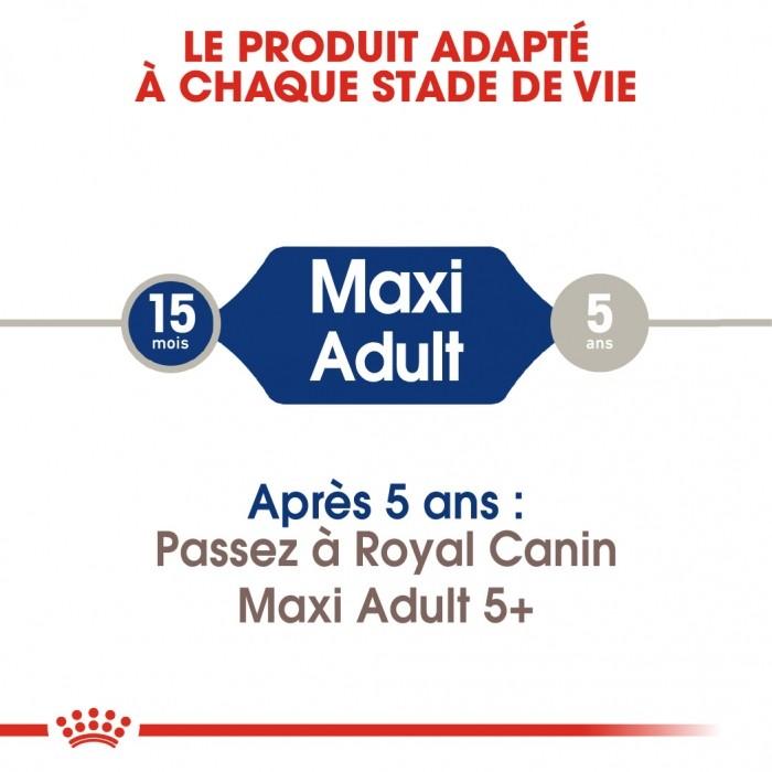Alimentation pour chien - Royal Canin Maxi Adult - Croquettes pour chien pour chiens