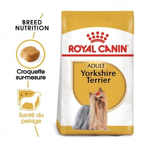 Alimentation pour chien - Royal Canin Yorkshire Terrier Adult - Croquettes pour chien  pour chiens
