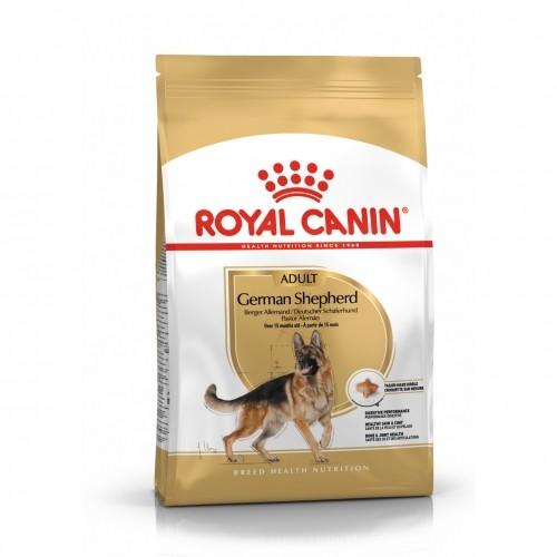 Alimentation pour chien - Royal Canin Berger Allemand Adult (German Shepherd) pour chiens