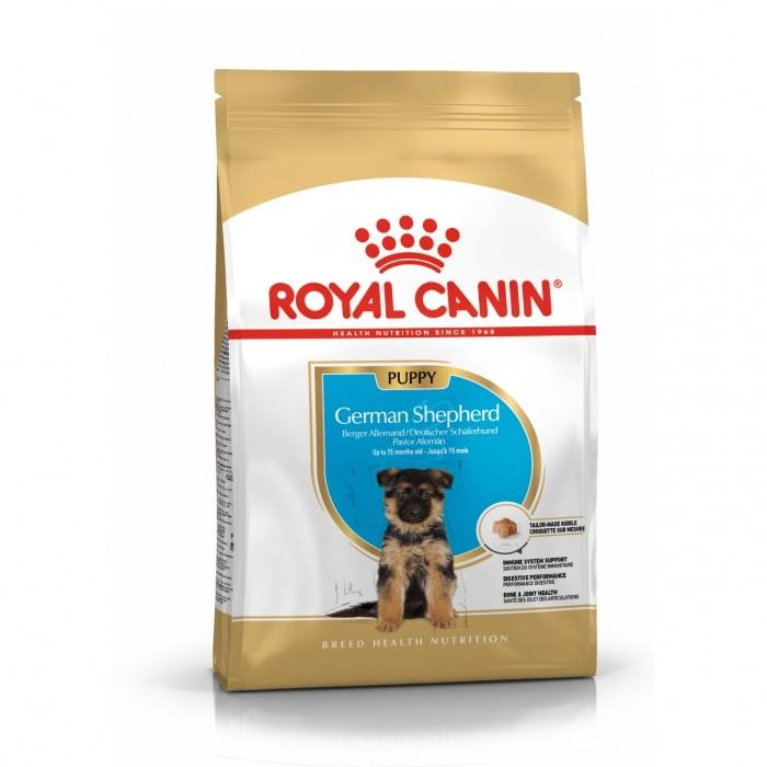 Royal Canin Berger Allemand Puppy (German Shepherd)-Berger Allemand Junior
