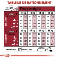 Croquettes pour chien - ROYAL CANIN Size Nutrition Medium Ageing 10+