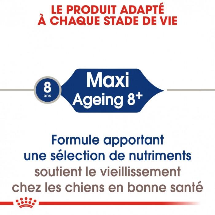 Alimentation pour chien - Royal Canin Maxi Ageing 8+ - Croquettes pour chien pour chiens