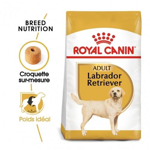 Alimentation pour chien - Royal Canin Labrador Retriever Adult - Croquettes pour chien pour chiens