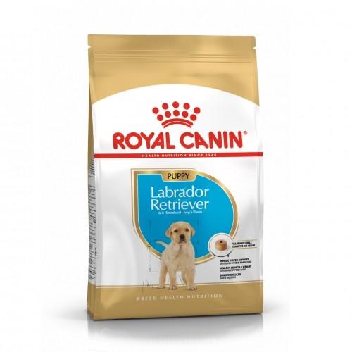 Alimentation pour chien - Royal Canin Labrador Retriever Puppy pour chiens