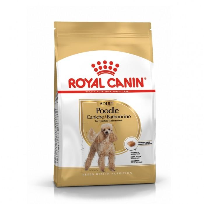 Royal Canin Caniche Adult (Poodle)-Caniche (Poodle)