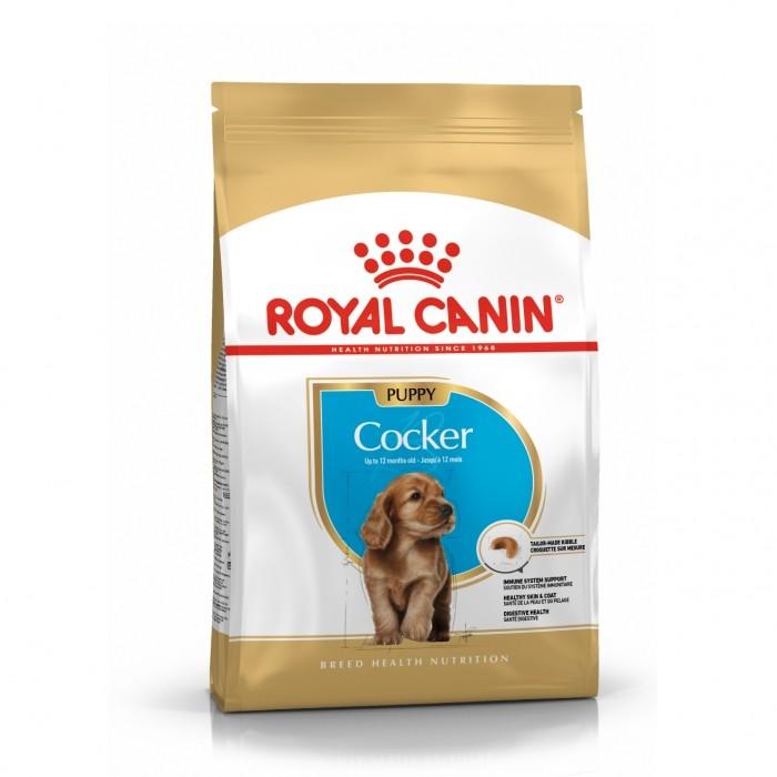 Royal Canin Cocker Puppy-Cocker junior