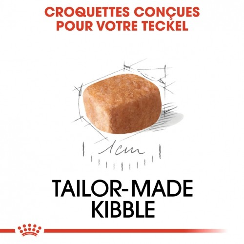 Alimentation pour chien - Royal Canin Teckel Puppy (Dachshund) pour chiens