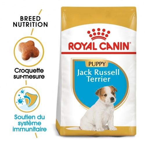 Alimentation pour chien - Royal Canin Jack Russell Puppy pour chiens