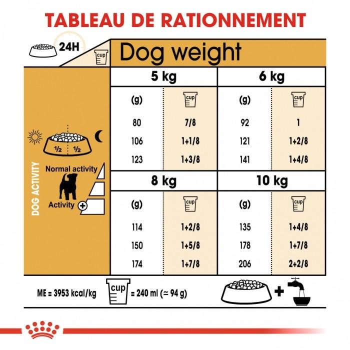 Alimentation pour chien - Royal Canin Jack Russell Adult pour chiens