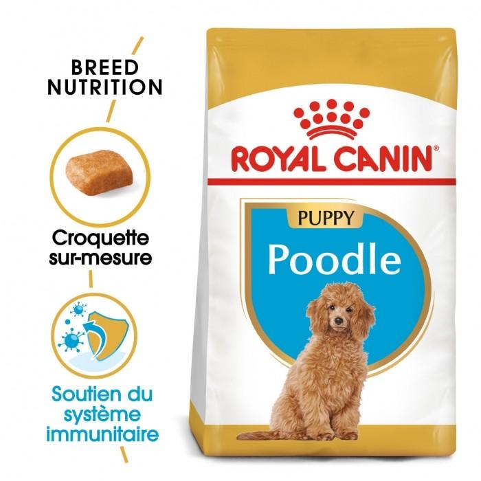Alimentation pour chien - Royal Canin Caniche Puppy (Poodle) pour chiens