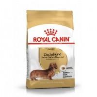Croquettes pour chien - Royal Canin Teckel Adult (Dachshund) Teckel (Dachshund)