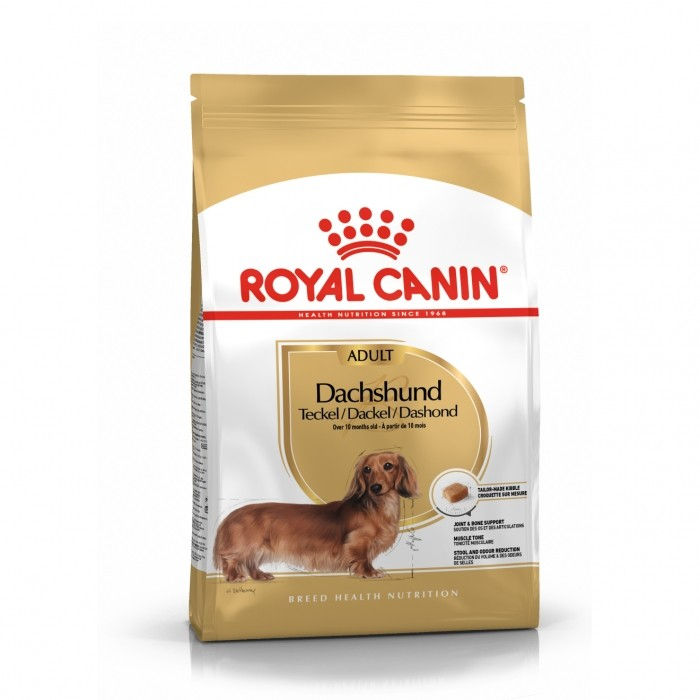 Alimentation pour chien - Royal Canin Teckel Adult (Dachshund) pour chiens