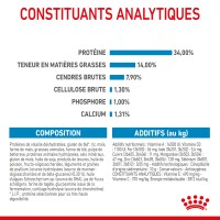 Croquettes pour chien - ROYAL CANIN Size Nutrition Giant Puppy