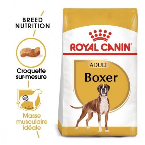 Alimentation pour chien - Royal Canin Boxer Adult pour chiens
