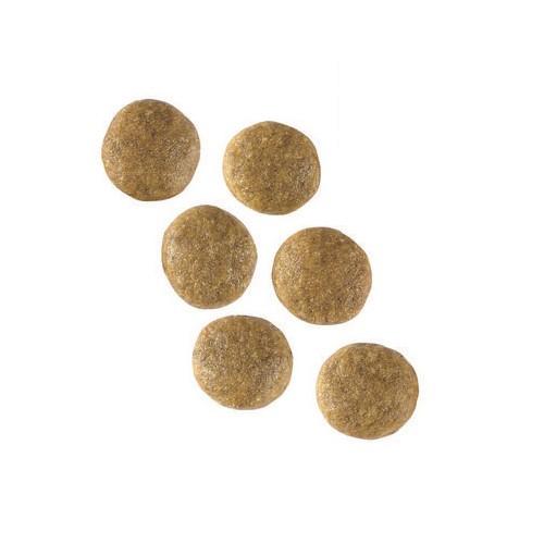 Alimentation pour chien - Royal Canin Vet Care Adult Dog pour chiens