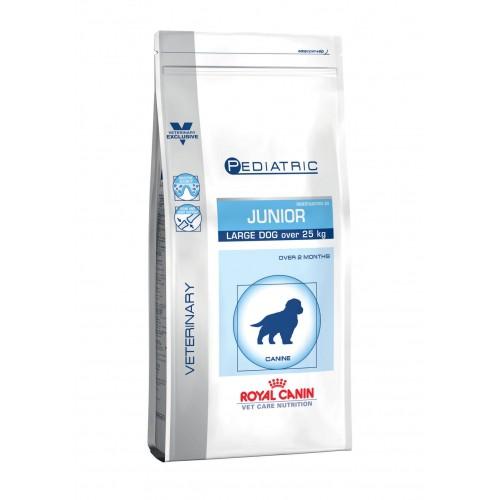 Alimentation pour chien - Royal Canin Vet Care Junior Large Dog pour chiens