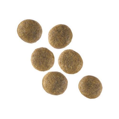 Alimentation pour chien - Royal Canin Vet Care Adult Large Dog pour chiens