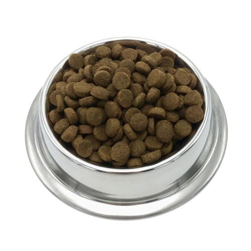 Alimentation pour chien - INVERS Croquettes durables aux insectes - Adulte Chien Moyen pour chiens
