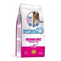 Croquettes pour chien - FORZA 10 Medium Maintenance