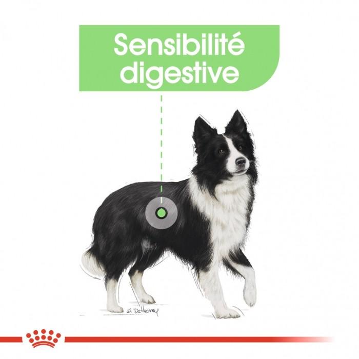 Alimentation pour chien - Royal Canin Medium Digestive Care pour chiens