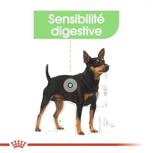 Alimentation pour chien - Royal Canin Mini Digestive Care pour chiens
