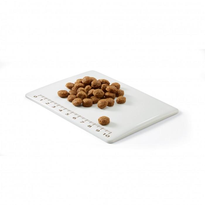 Alimentation pour chien - Schesir Natural Selection Adult Small & Toy - Thon ou Agneau pour chiens