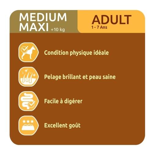 Alimentation pour chien - Ultima Medium Maxi Adult pour chiens