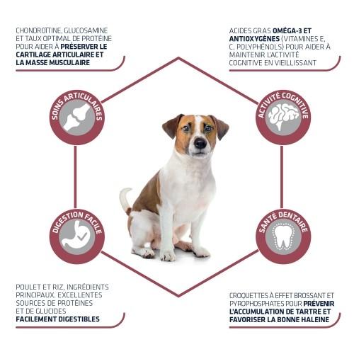 Alimentation pour chien - ADVANCE Mini +8 pour chiens