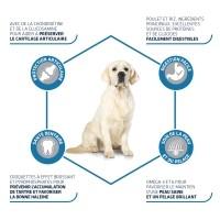 Croquettes pour chien - ADVANCE Maxi Adult