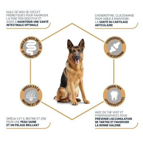 Alimentation pour chien - ADVANCE German Shepherd pour chiens