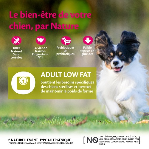 Alimentation pour chien - Wellness CORE Healthy Weight Small Breed - Dinde pour chiens