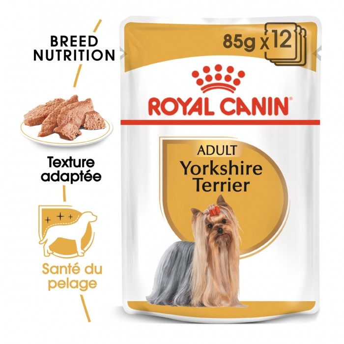 Alimentation pour chien - Royal Canin Yorkshire Terrier - Pâtée pour chien pour chiens