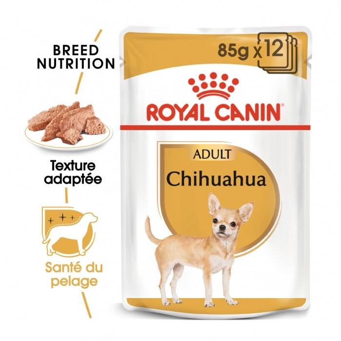 Alimentation pour chien - Royal Canin Chihuahua - Pâtée pour chien pour chiens