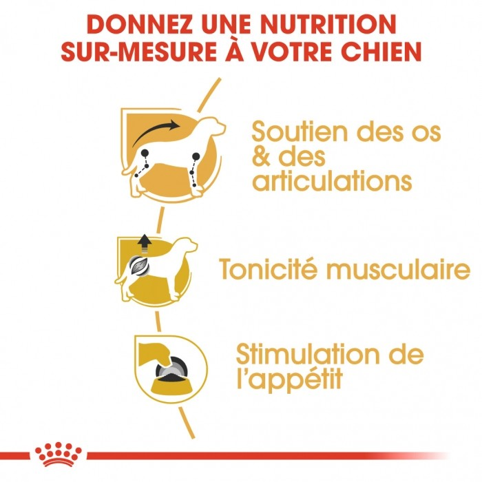 Alimentation pour chien - Royal Canin Teckel (Dachshund) - Pâtée pour chien pour chiens