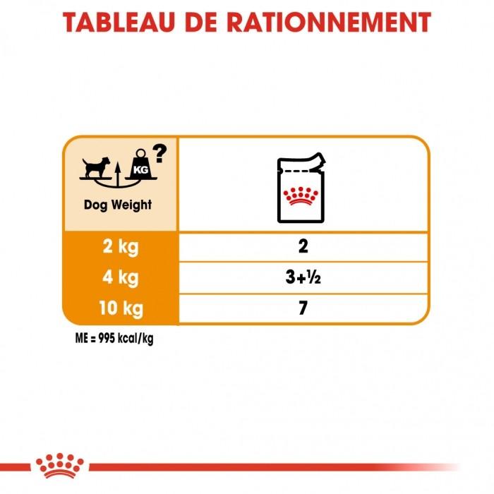 Alimentation pour chien - Royal Canin Coat Care pour chiens