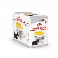 Sachet fraîcheur pour chien - ROYAL CANIN Care Nutrition Dermacomfort Adulte - Lot 12 x 85g