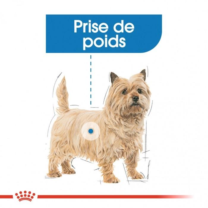 Alimentation pour chien - Royal Canin Light Weight Care - Pâtée pour chien pour chiens