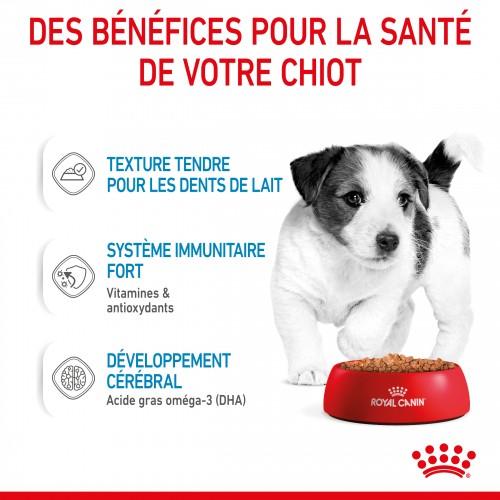 Alimentation pour chien - Royal Canin Mini Puppy - Pâtée pour chiot pour chiens