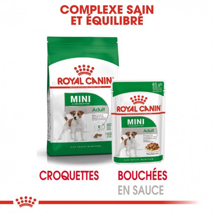 Alimentation pour chien - Royal Canin Mini Adult - Pâtée pour chien pour chiens